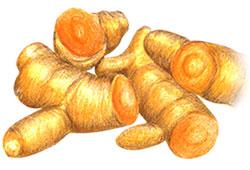 tumeric root